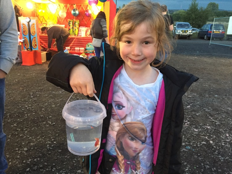 Winning a goldfish at a fair